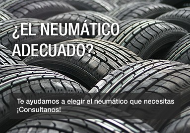 El neumático adecuado